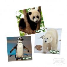 Puzzles Animales en Extinción